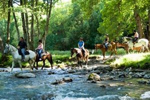 Horseriding-in-the-Alps